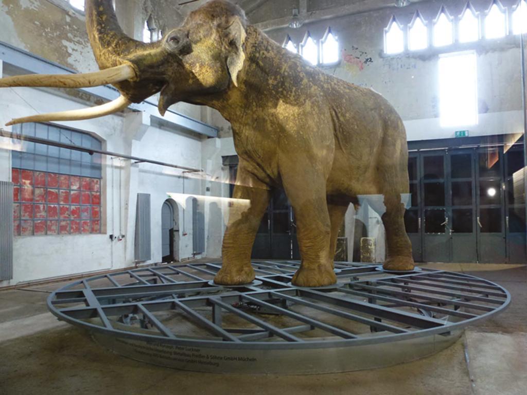 Lebensgroßes Replikat des Geiseltaler Waldelefanten