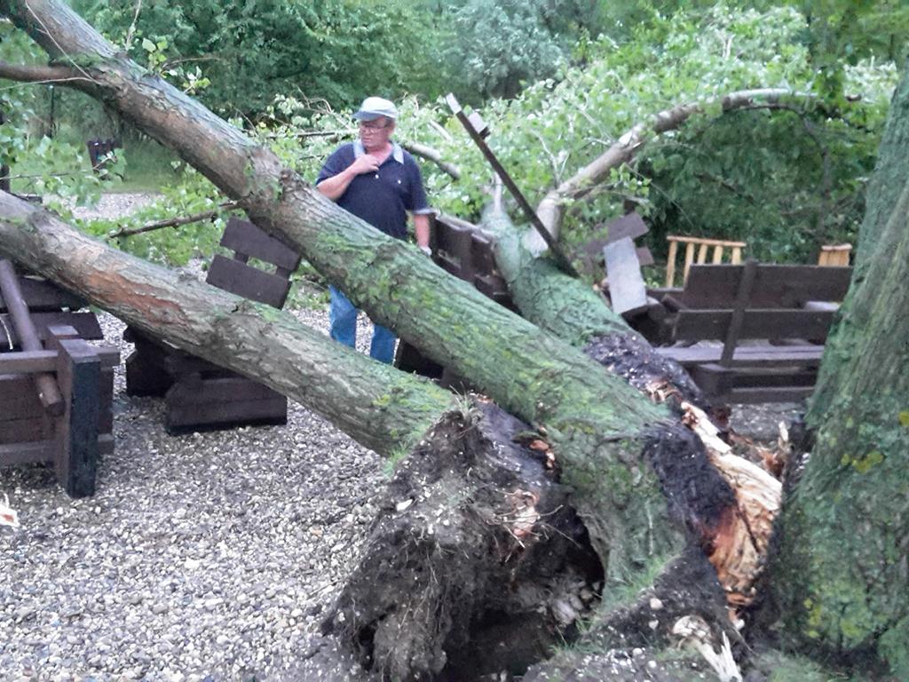 Sturmschaden an der Wetterschutzhütte