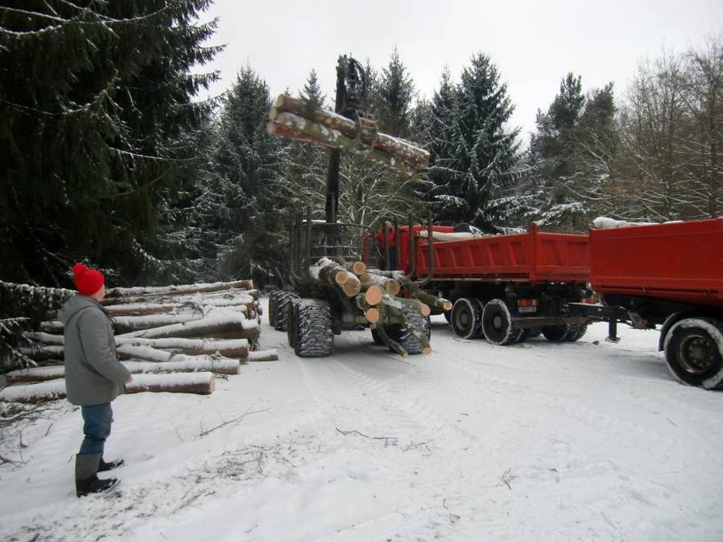Holztransport zum Sägewerk