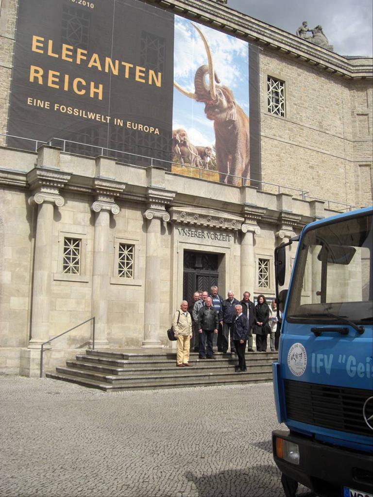 Besuch Waldelefant 21.04.2010