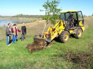 Mammutbaum wird ausgehoben 21.04.2009