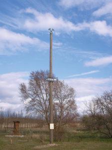 """Fertigstellung des symbolträchtigen Mastes an der Wetterschutzhütte """"Am großen Hügel"""""""