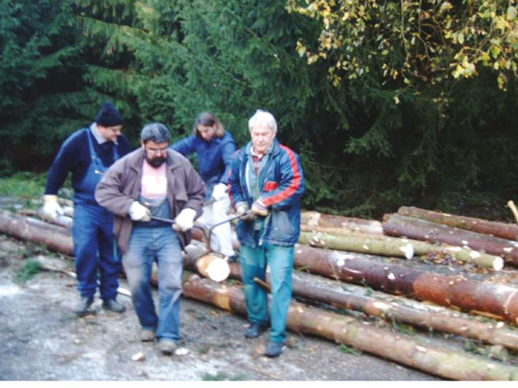 Holzaktion im Ziegelrodaer Forst