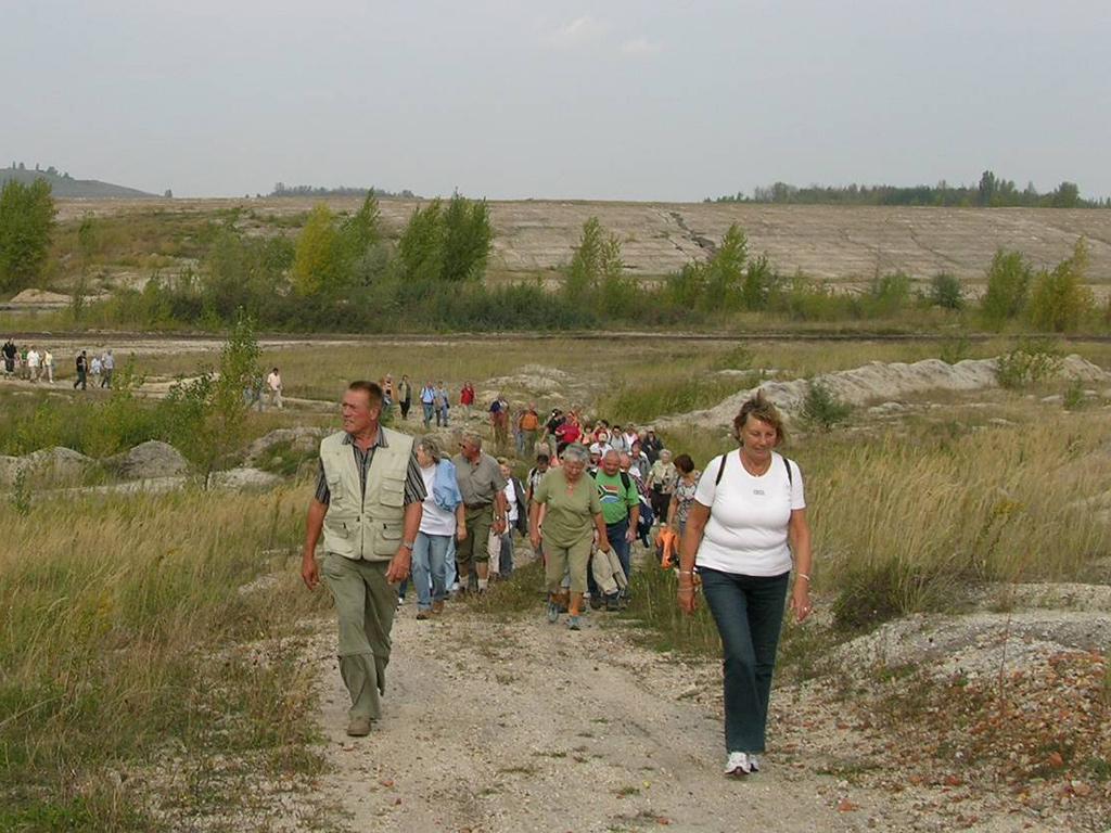 "Wanderung in den ""Goldenen Herbst am Geiseltalsee"""